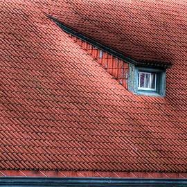 Jean Noren - Roof line