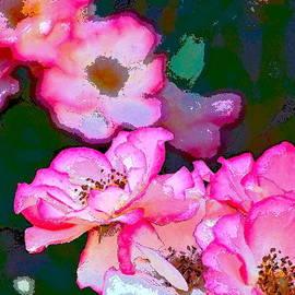 Rose 130 by Pamela Cooper