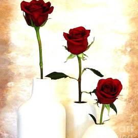 Marsha Heiken - Roses High to Low