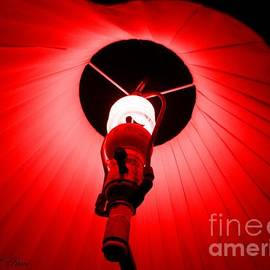 Shana Rowe Jackson - Roxannes Red Light