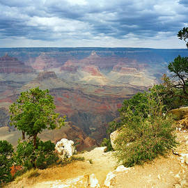 Scenic Grand Canyon 24 by M K Miller