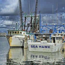 Deborah Benoit - Sea Hawk Under Cover