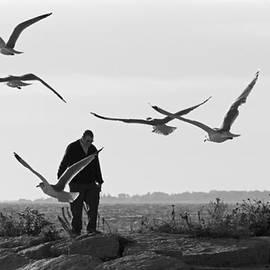 David Freuthal - Seaside