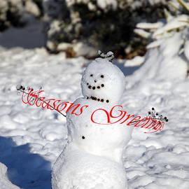 Skip Willits - SEASONS GREETINGS SNOWCHILD