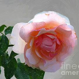 Sensual Beauty by RC DeWinter