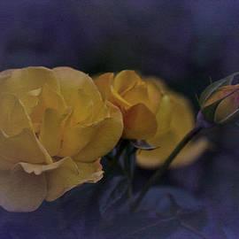 Richard Cummings - September Roses