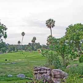 Serengeti Plain by John Black