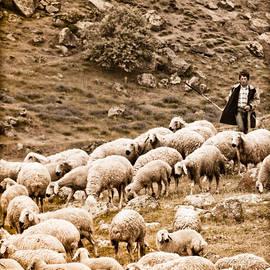 Guzelyurt, Turkey - Shepherd by Mark Forte