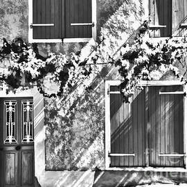 Jack Torcello - Shutter and Vine France 2011