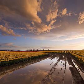 Mike Reid - Skagit Sunset Reflected