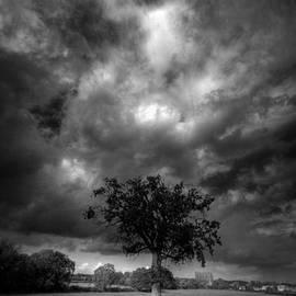 John Chivers - Skys of fury