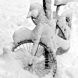 Raffaella Lunelli - Snow bicicle