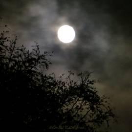 Sonali Gangane - Soothing Moon