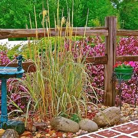 Splendor in the Grass by Randy Rosenberger