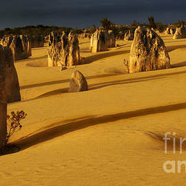 Bob Christopher - Australia Nambung Desert 4