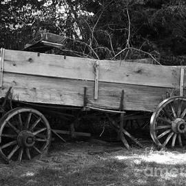 Splintered Wheels by Charleen Treasures