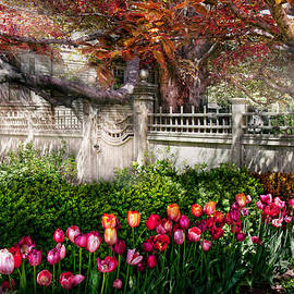 Mike Savad - Spring - Gate - My Spring garden