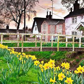 Tom Gowanlock - spring village