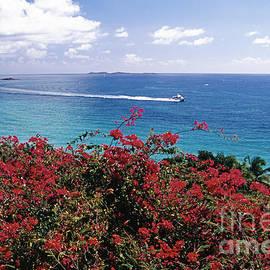 George Oze - St Thomas Coastal Panorama