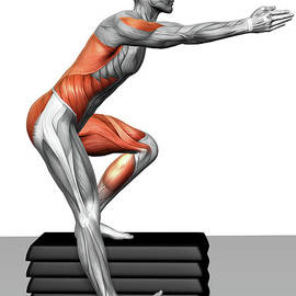 Step-down Exercises by MedicalRF.com