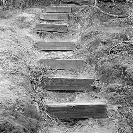 Elizabeth  Doran - Steps