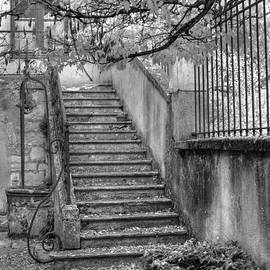 Jan Carr - Steps
