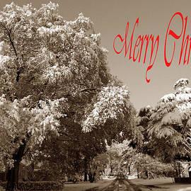 Skip Willits - STREET SCENE MERRY CHRISTMAS