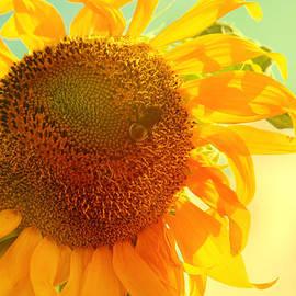 Summer Daydream by Toni Hopper
