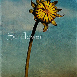 Sunflower Text by Melany Sarafis