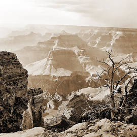 Sunlight in the Grand Canyon by M K Miller