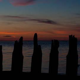 Matt Dobson - Sunset Silhouette