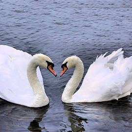 Swan Heart by Kristin Elmquist