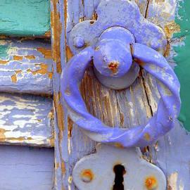 Lainie Wrightson - Terrace Door