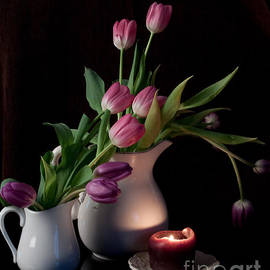 Sherry Hallemeier - The Beauty of Tulips