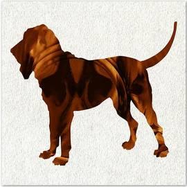 The Bloodhound by Daryl Macintyre