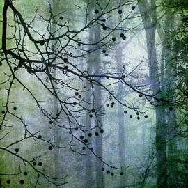 Judi Bagwell - The Forest Cathedral