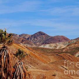The Hills By Calico California by Susanne Van Hulst