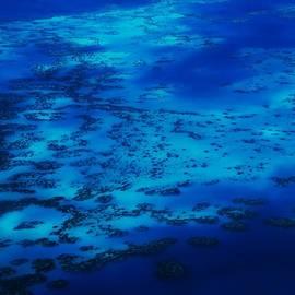 Marcus Dagan - The Reefs Bermuda # 9