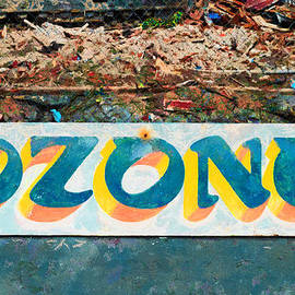 The Sign of the Ozone by Steve Taylor