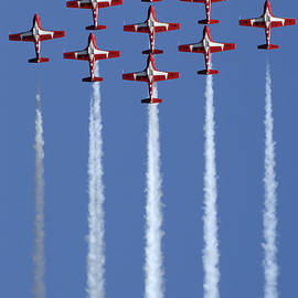 The Snowbirds Going Vertical by Bob Christopher