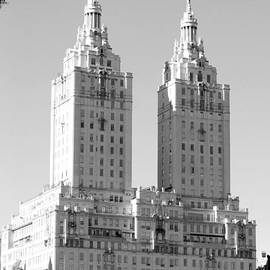 Rob Hans - THE TOWERS in BLACK AND WHITE