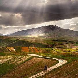 Hamid Reza Farzandian - The way home