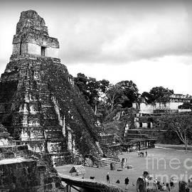 Tikal Ruins by Trude Janssen