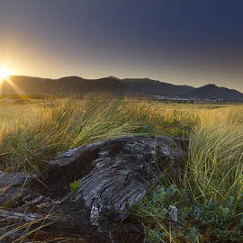 Touched by the Sun by Debra and Dave Vanderlaan