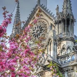 Jennifer Ancker - Vibrant Cathedral