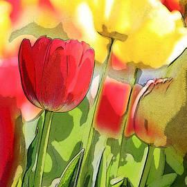Glennis Siverson - Vibrant Tulips
