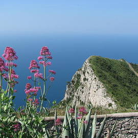 Carla Parris - View from Monte Solaro