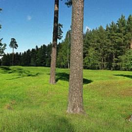 Jan W Faul - Viking Mound Field