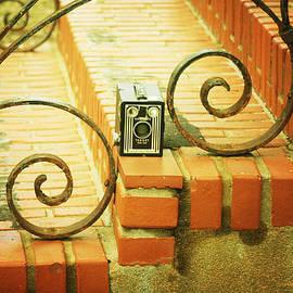 Vintage Camera Trio by Toni Hopper