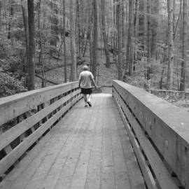 Val Oconnor - Walkway Through the Forest